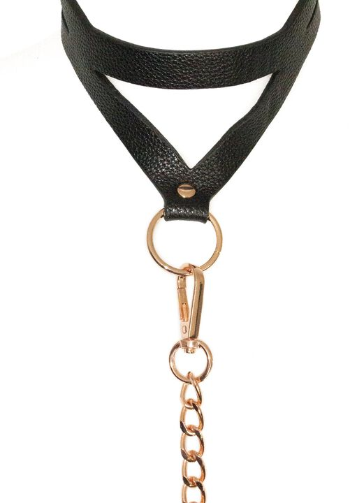 Signature Faux Leather Collar & Lead  image number 3.0