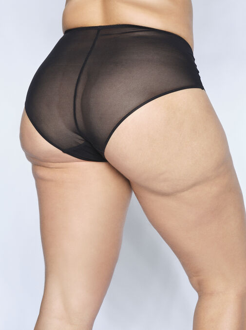 Sexy Lace High Waisted Brief image number 5.0