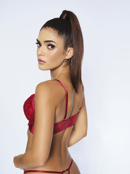 Fiercely Sexy Plunge Bra image number 5.0