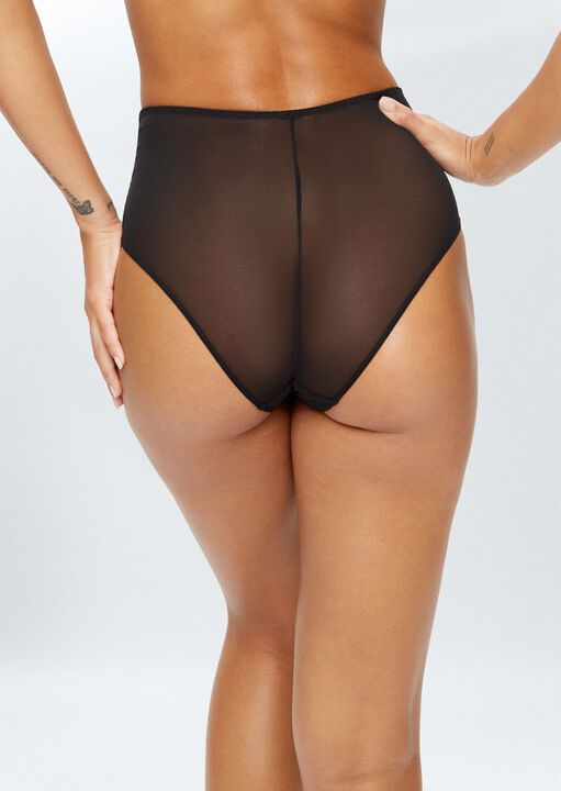 Sexy Lace Sustainable High Waisted Brief image number 3.0