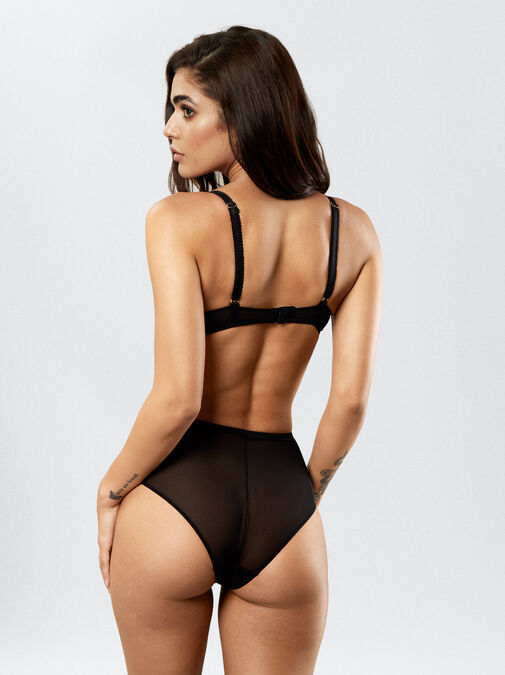 Sexy Lace High Waisted Brief image number 3.0