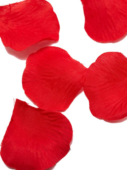 Bed of Roses Petals image number 2.0