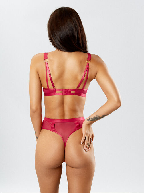 The Lace Fantasy High Waisted Suspender Thong image number 5.0
