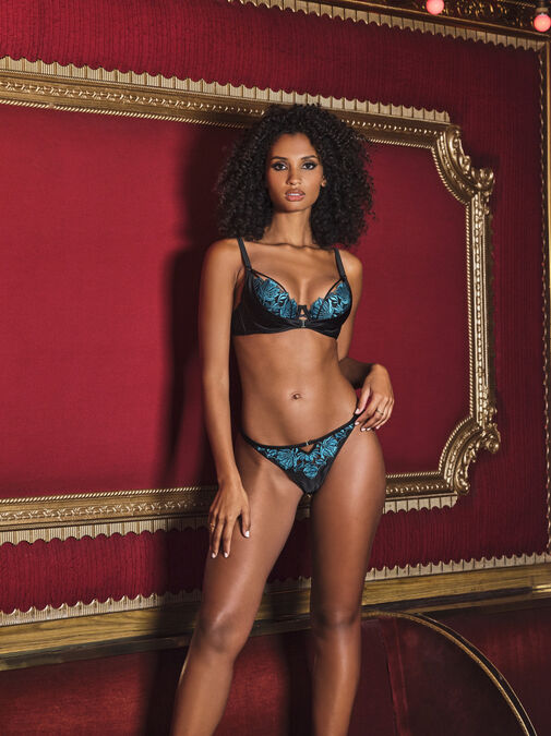 The Seductive Touch Plunge Bra image number 1.0
