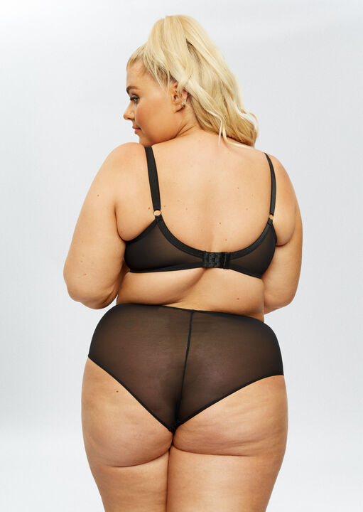 Sexy Lace Sustainable High Waisted Brief image number 5.0