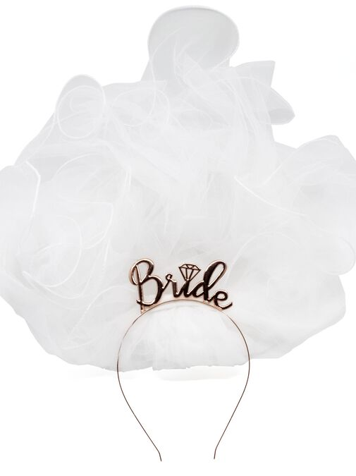 Hen Party Bridal Veil image number 1.0